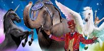 2014 Circus Thumb