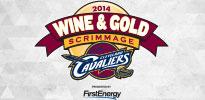Wine & Gold Scrimmage Thumb (2014)